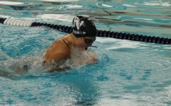 Spartan swimmers succeed at State Swimming and Diving meet