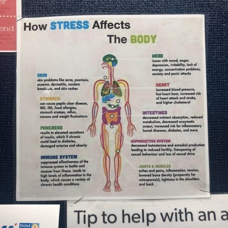 The new way to handle stress in school
