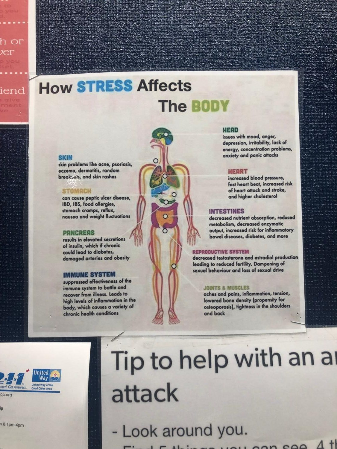 this poster shows how stress affects the body.