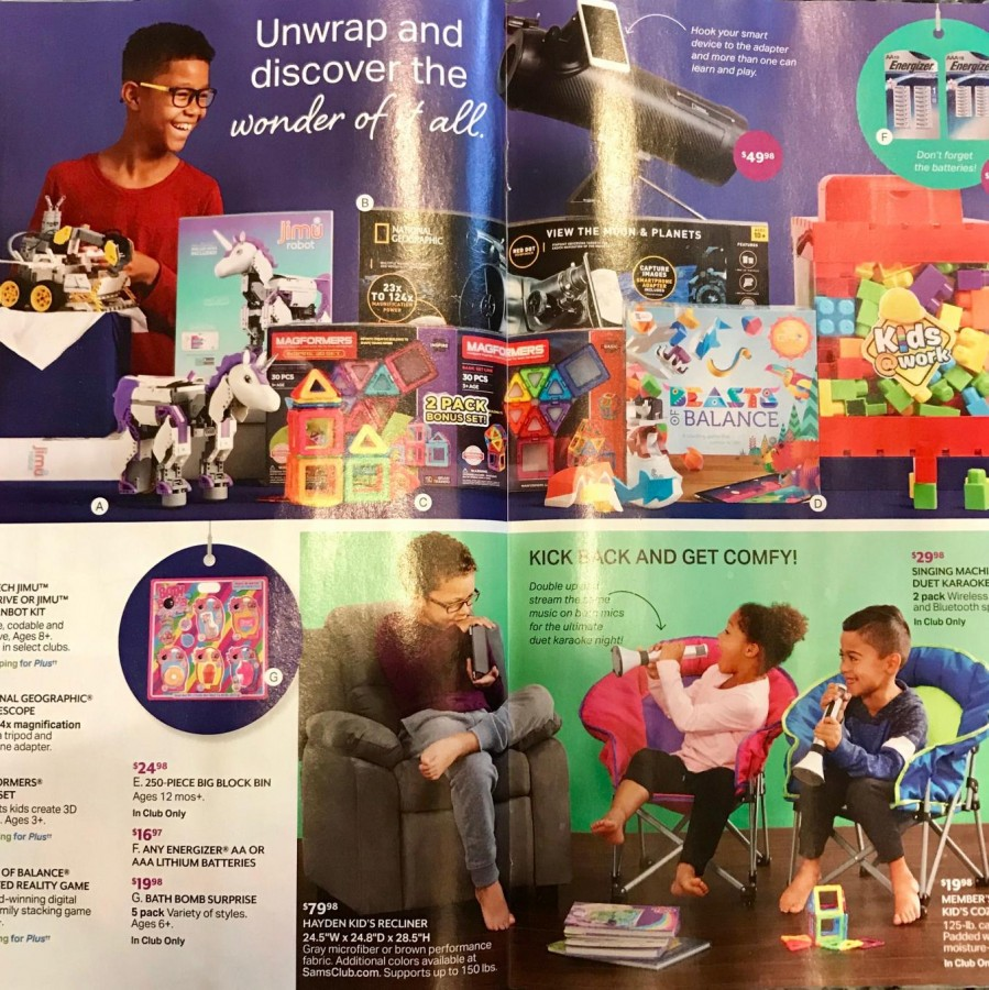 Bed+Bath+and+Beyond+magazine+advertising+the+top+toys+of+2018.