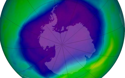The slow repair of the ozone layer