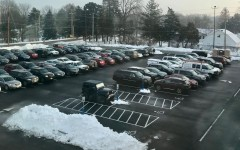 My two cents on: The SENIOR/Junior lot