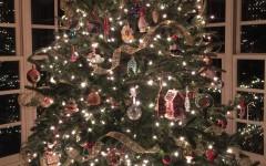 Christmas tree market timbers