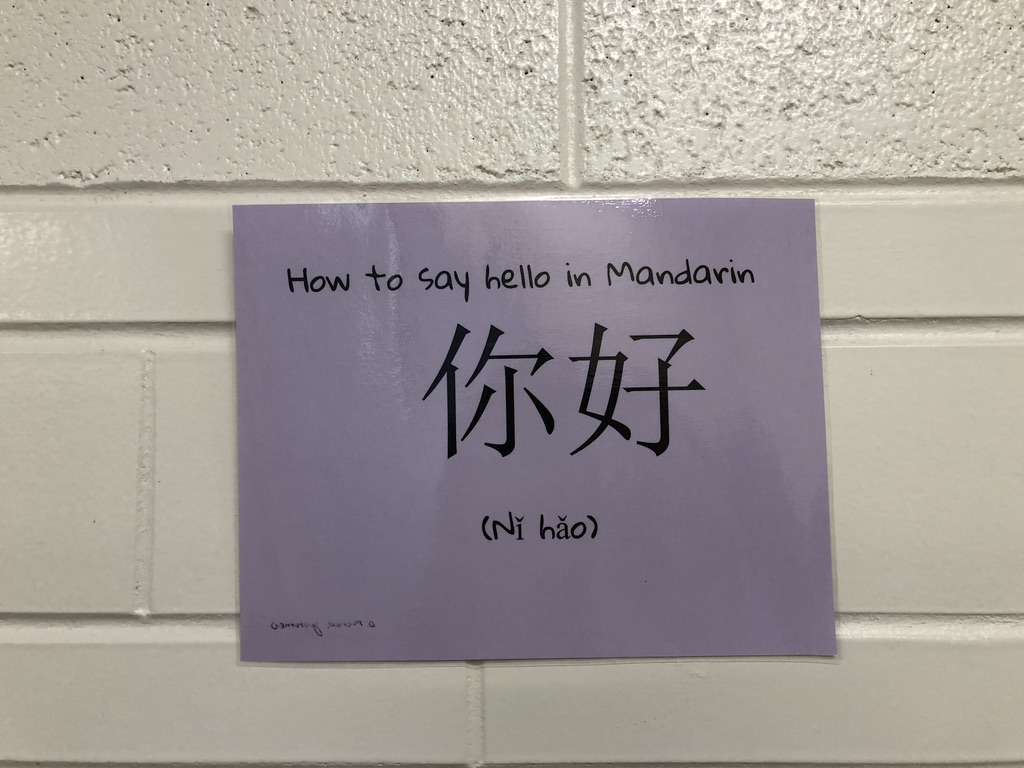 Signs like this put around the school explain how to say hello in different languages.