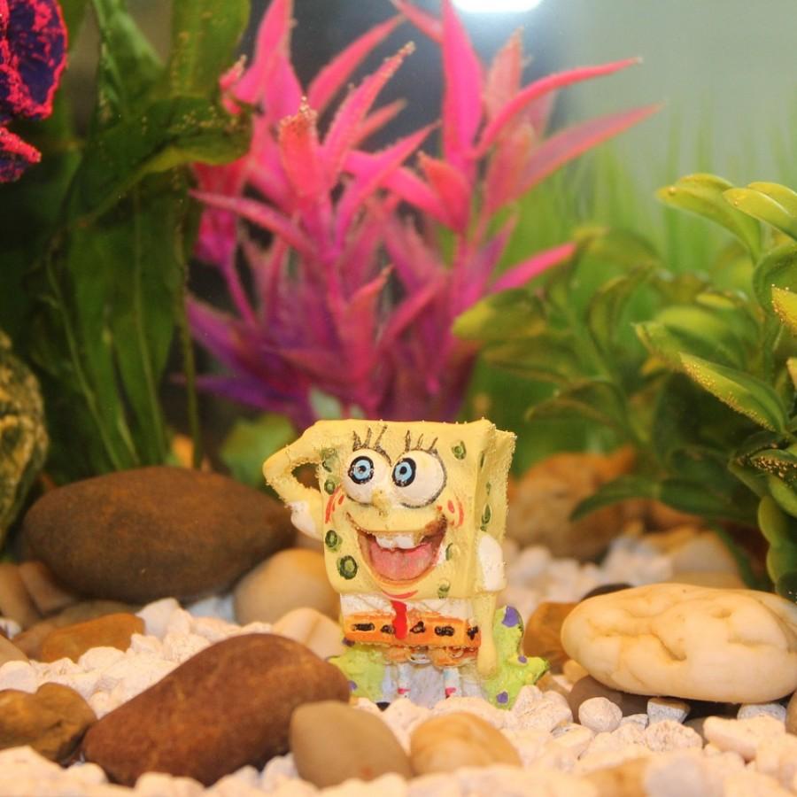 Spongebob+continues+to+live+under+the+sea.