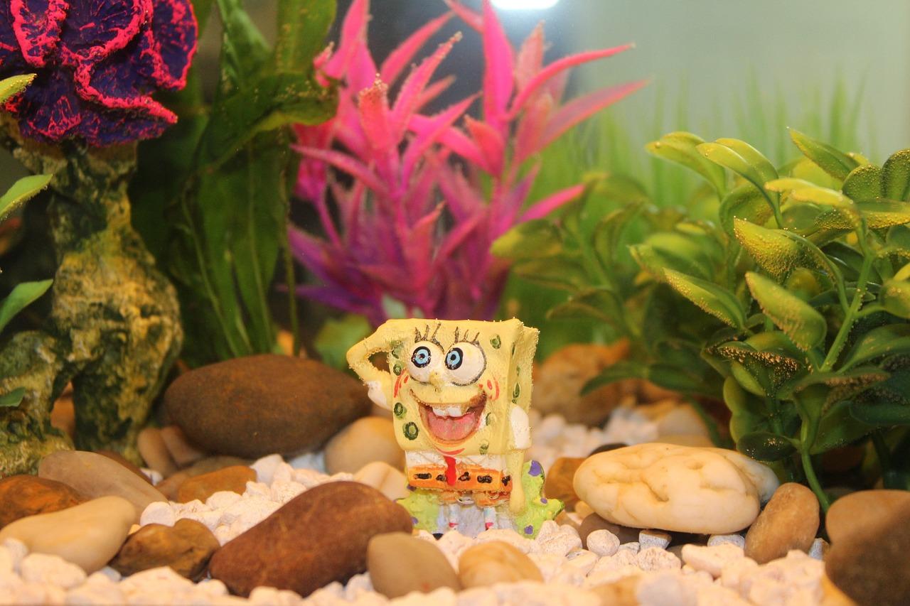 Spongebob continues to live under the sea.