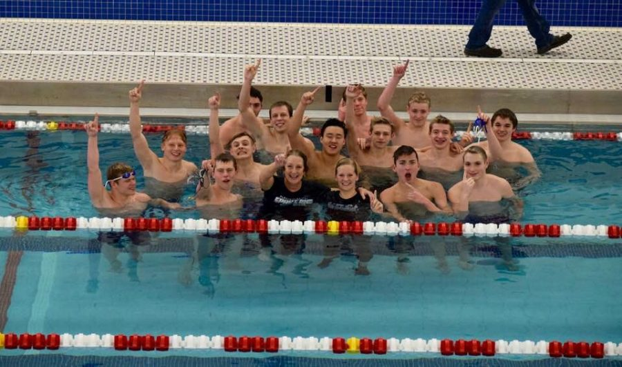 Boys' swimmers float to state, but their high hopes took a deep dive