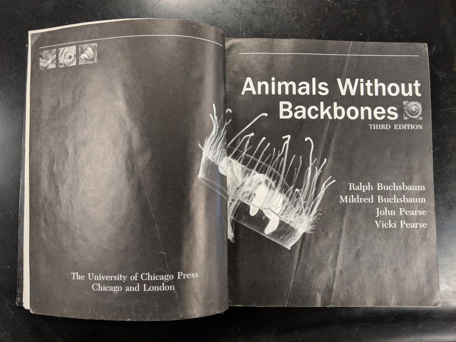 One of many old textbooks that are no longer in use