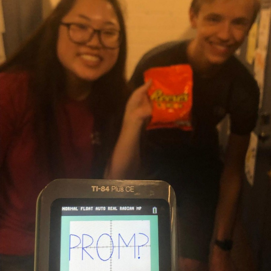 The evolution of promposals
