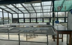 An unknown opportunity: PV's greenhouses experience neglect
