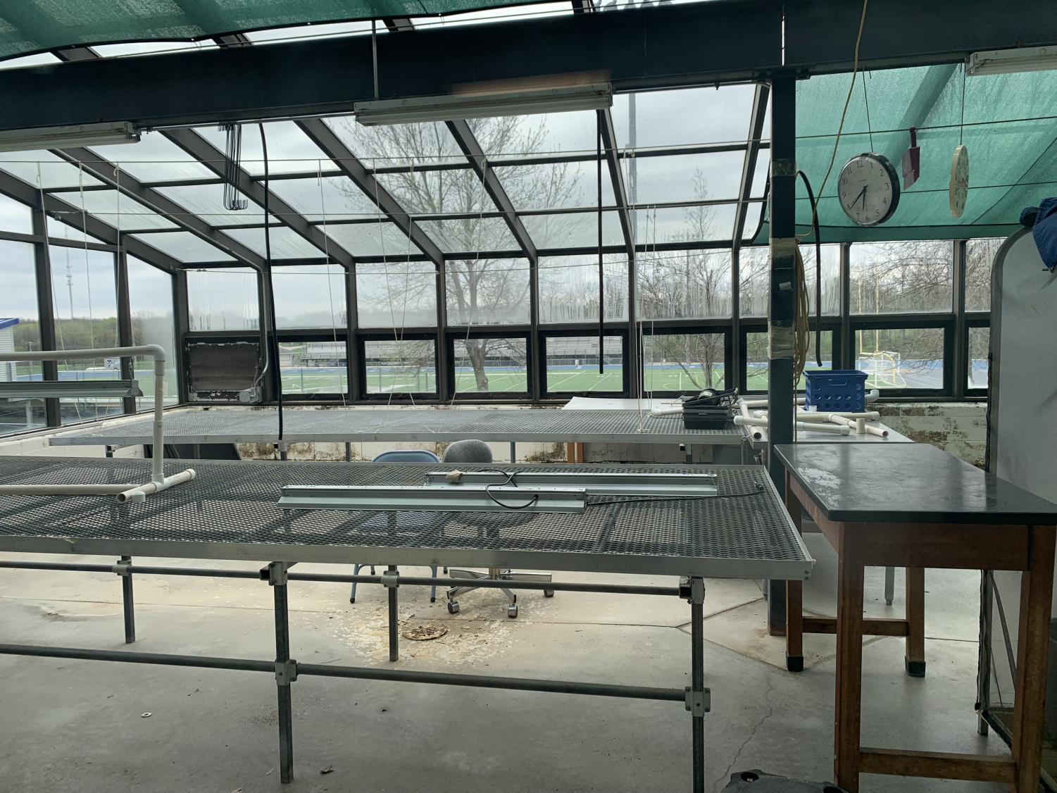 The main greenhouse on the first floor has been empty and in disuse for quite some time.