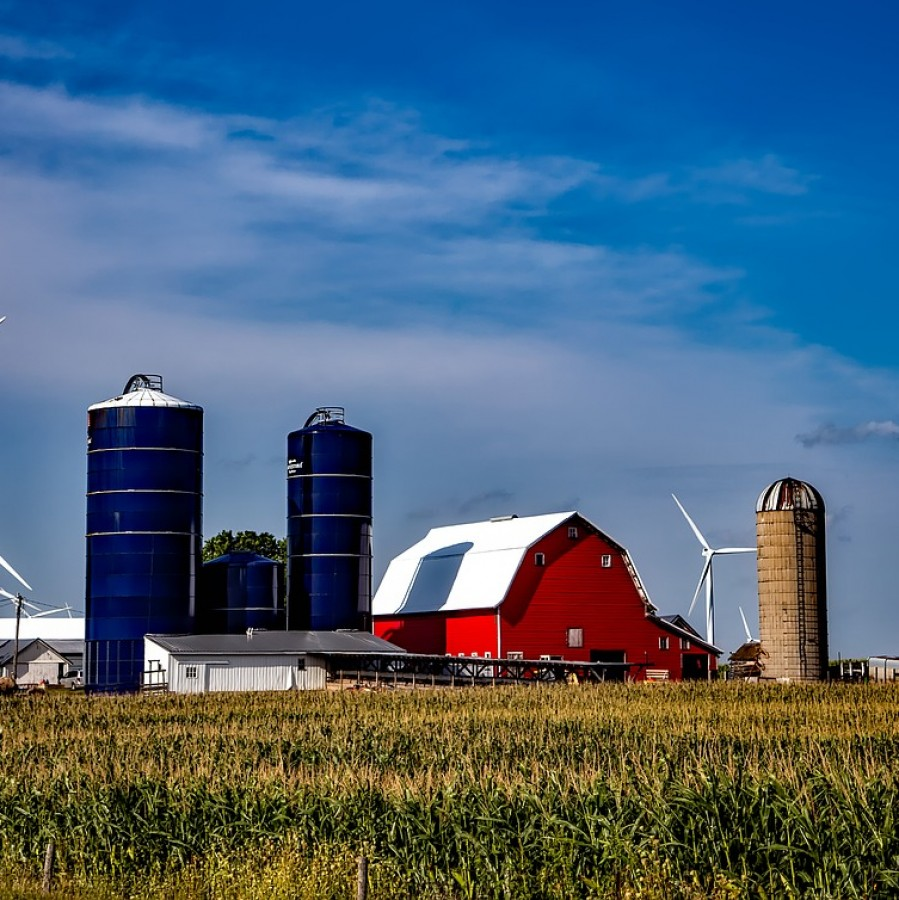 Iowa's economy is based largely in agriculture.  Despite leading the country in the production and farming of many products, Iowa only ranked 32nd in economy based on growth, employment, and business environment.