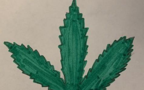 Illinois goes green: legalization of marijuana hopes to boost state revenue