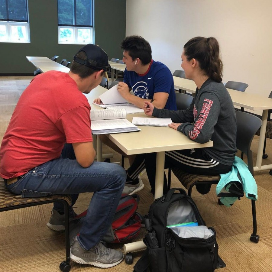 Monmouth College students Andrew Lee, Adam Curry, and Cloey Little working on a project.