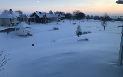 QUIZ: Can you survive the arctic tundra of an Iowa winter?