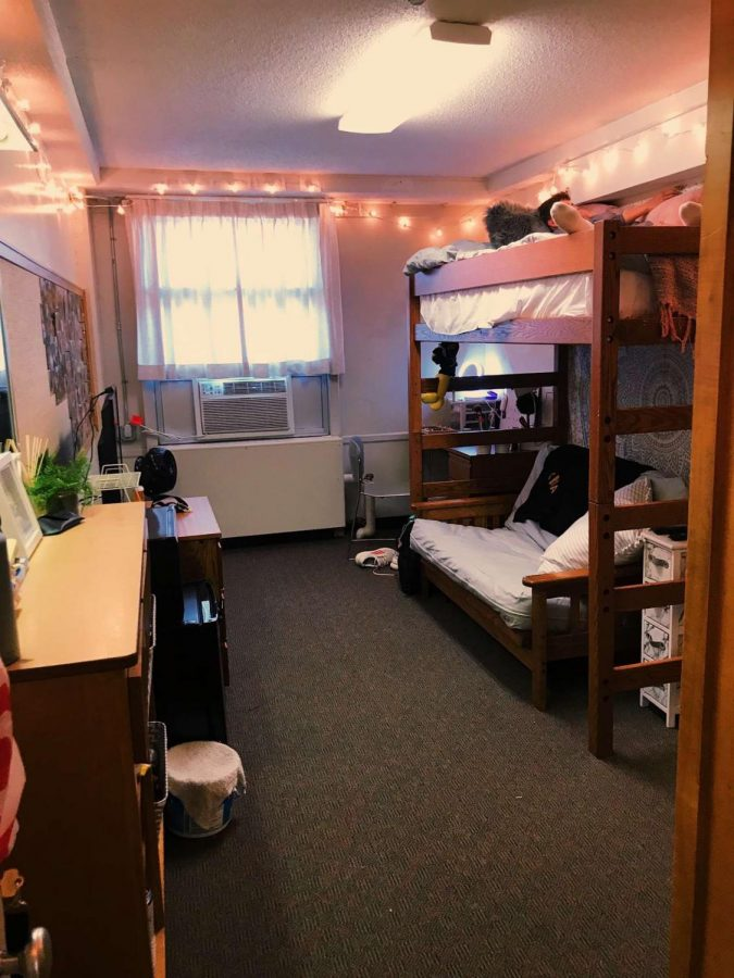 Kara Neuhaus', 19', dorm room finished product at University of Iowa for the 2019-2020 school year.