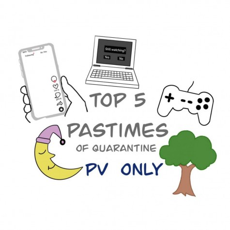 A visual representation of PV students' top 5 favorite pastime pandemics.