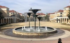 Fountain at Texas Christian University during a visit in February