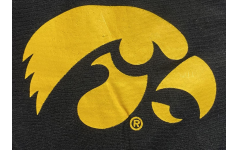 The University Iowa Women's Swimming and Diving Team was recently reinstated.