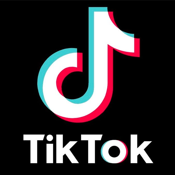 TikTok+has+been+the+platform+for+many+up+and+coming+social+media+influencers.